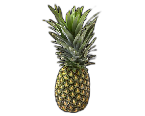 FRUITS PINEAPPLE Learn about